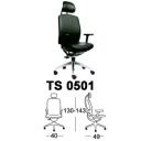 Kursi Chairman TS 0501